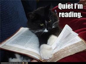Quiet I'm reading.