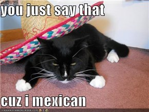 you just say that  cuz i mexican