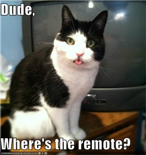 Dude,  Where's the remote?