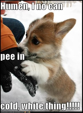 Humen, I no can  pee in cold, white thing!!!!!