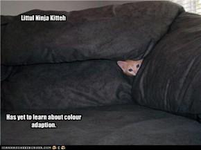 Littul Ninja Kitteh