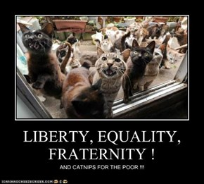 LIBERTY, EQUALITY, FRATERNITY !