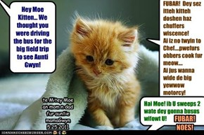 Hey Moe Kitten... We thought you were driving the bus for the big field trip to see Aunti Gwyn!