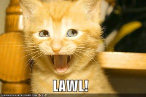 LAWL!