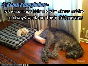 @ Kamp Kuppykakes -