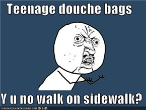 Teenage douche bags  Y u no walk on sidewalk?