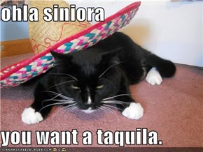 ohla siniora  you want a taquila.
