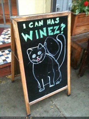 Happy Cat Has a Drinkin' Problem