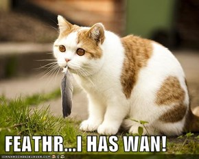 FEATHR...I HAS WAN!