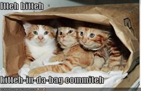 Itteh bitteh  kitteh-in-da-bag commiteh