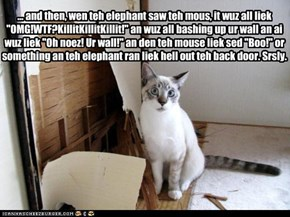 "... and then, wen teh elephant saw teh mous, it wuz all liek ""OMG!WTF?KillitKillitKillit!"" an wuz all bashing up ur wall an ai wuz liek ""Oh noez! Ur wall!"" an den teh mouse liek sed ""Boo!"" or something an teh elephant ran liek hell out teh back door. Srsl"