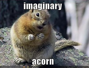imaginary   acorn