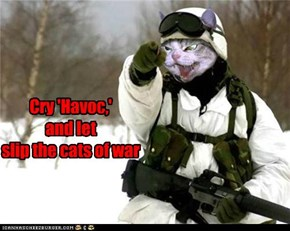 Cry 'Havoc,'  and let  slip the cats of war
