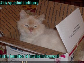 Ai iz speshul delibery  furry bundlez of luv from hevven!