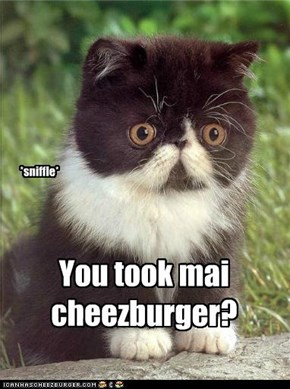 You took mai cheezburger?