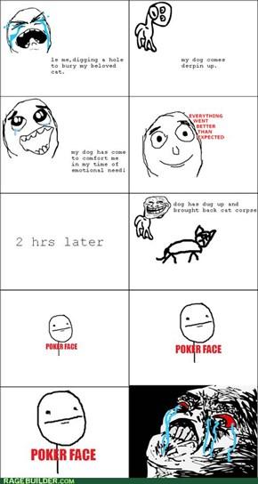 Dog troll!