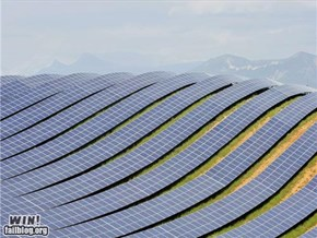 Solar Farm WIN