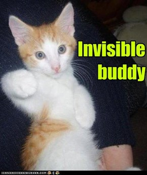 Invisible buddy
