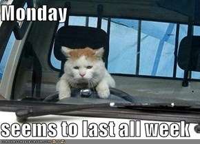 Monday  seems to last all week