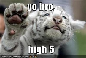 yo bro,  high 5
