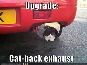 Upgrade:  Cat-back exhaust