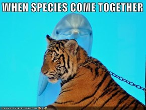 WHEN SPECIES COME TOGETHER