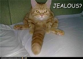 ~ JEALOUS? ~