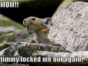 MOM!!  timmy locked me out again!