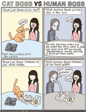 Kitteh Komic of teh Day: Cat Boss vs. Human Boss