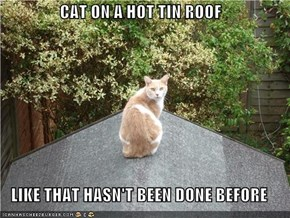 CAT ON A HOT TIN ROOF  LIKE THAT HASN'T BEEN DONE BEFORE