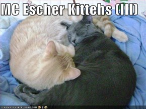 MC Escher Kittehs (III)