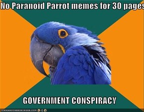 No Paranoid Parrot memes for 30 pages  GOVERNMENT CONSPIRACY
