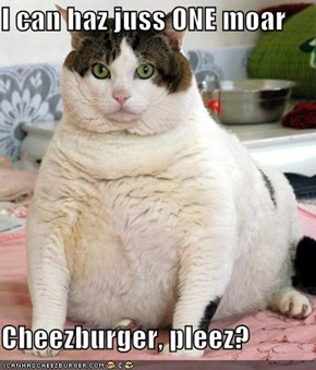 I can haz juss ONE moar  Cheezburger, pleez?