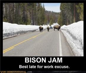 BISON JAM