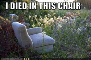 I DIED IN THIS CHAIR