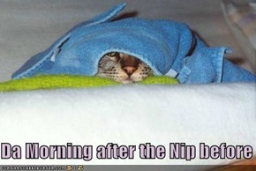 Da Morning after the Nip before