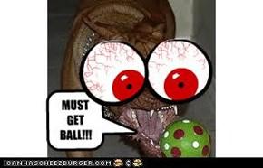MUST GET BALL!!!