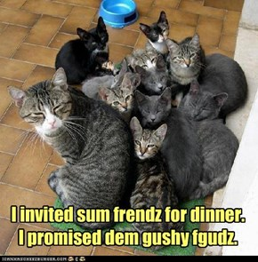I invited sum frendz for dinner. I promised dem gushy fgudz.