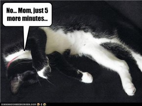 No... Mom, just 5 more minutes...