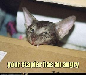 your stapler