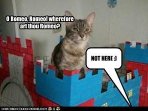 O Romeo, Romeo! wherefore art thou Romeo?