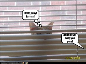 AHHHH!!Get away you perv!