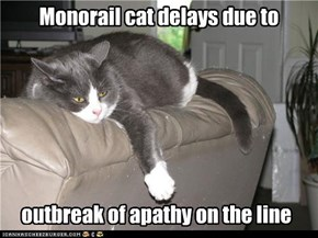 Monorail cat delays