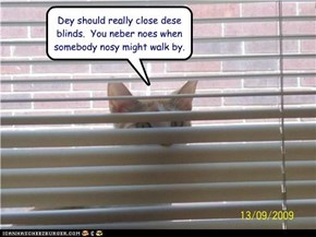 Dey should really close dese blinds.  You neber noes when somebody nosy might walk by.