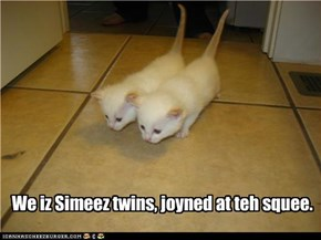 We iz Simeez twins, joyned at teh squee.