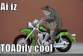 Ai iz  TOADily cool
