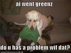 ai went greenz  do u has a problem wif dat?