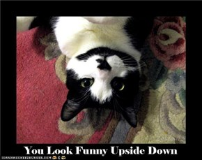 You Look Funny Upside Down
