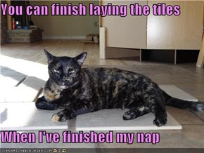 You can finish laying the tiles  When I've finished my nap