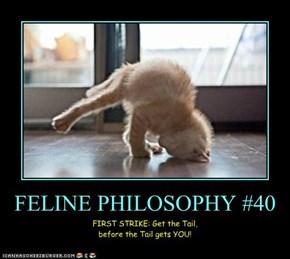 FELINE PHILOSOPHY #40